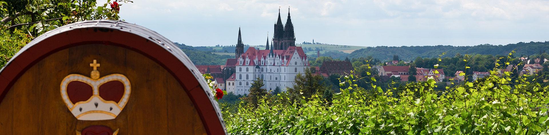 Schloss Proschwitz - Weinberg